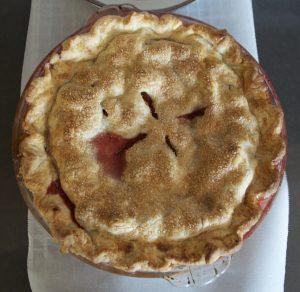 Savory pie crust recipe